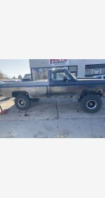 1977 Chevrolet C/K Truck for sale 101427709
